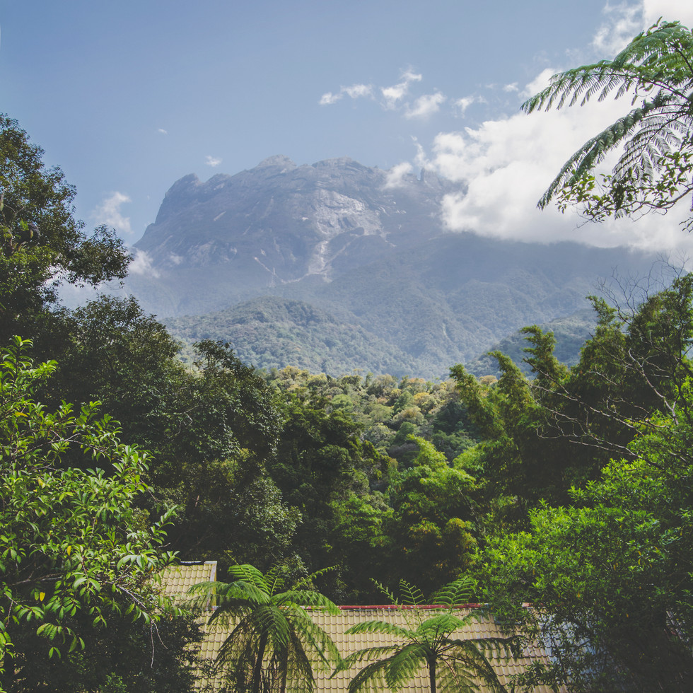 The view on the mount Kinabalu from Kinabalu Park.