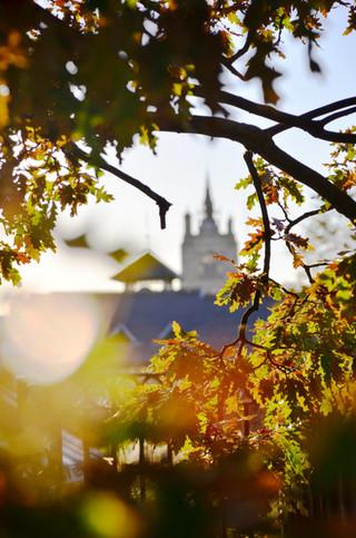 Autumn in Norwich city