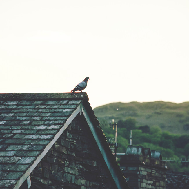 Ambleside, Lake District National Park