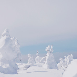 Zao Snow Monsters.