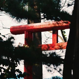 Shinmeisha Shrine.