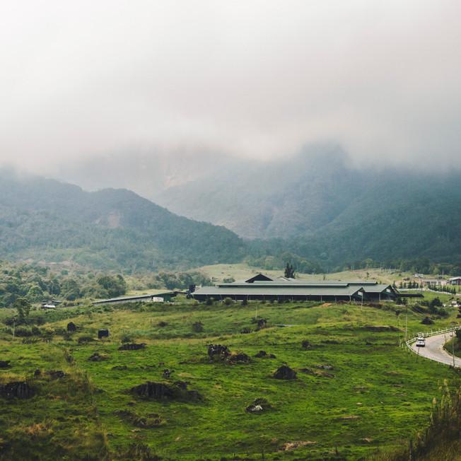 Desa Dairy Farm.