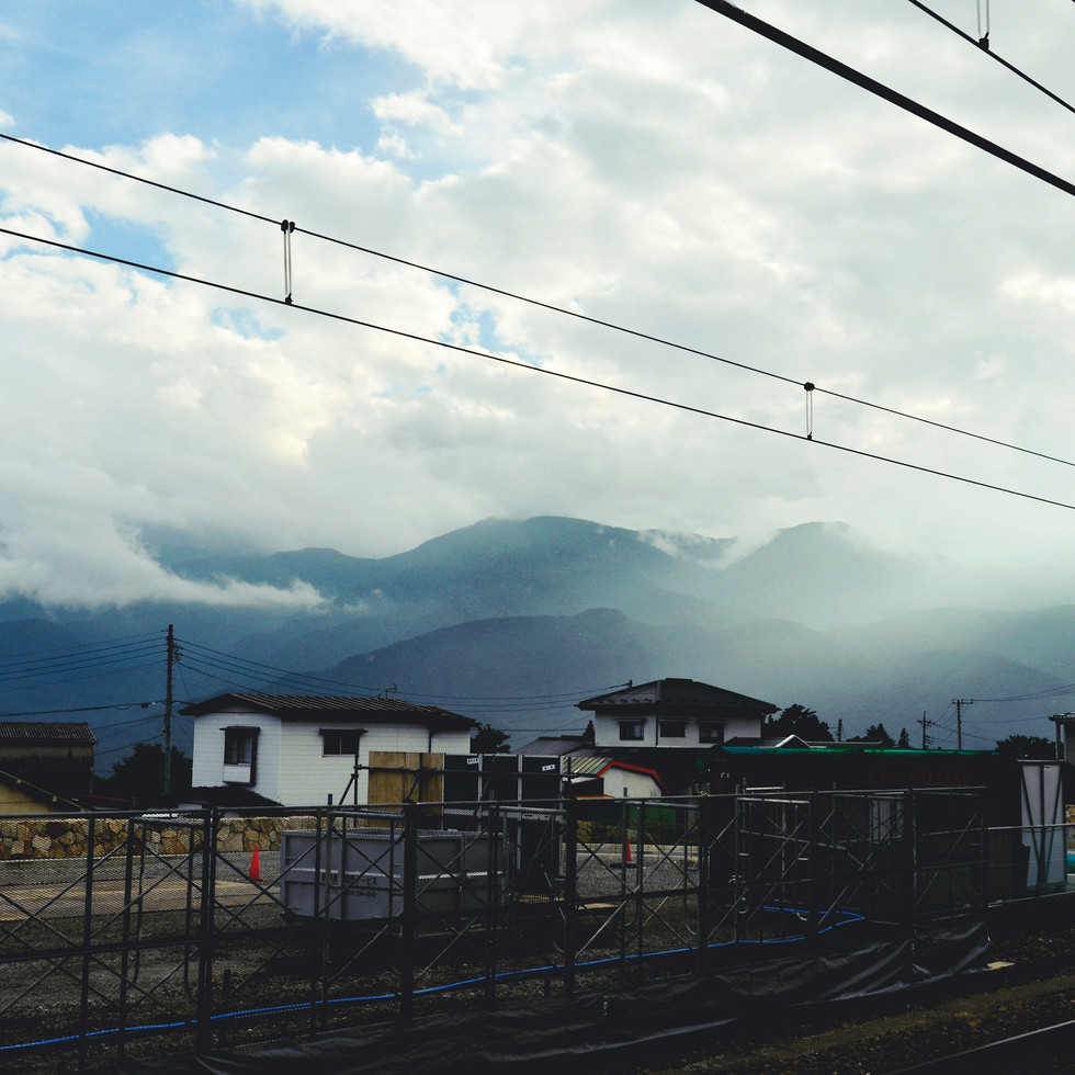 The view from the train.