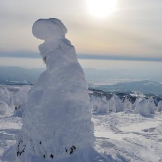 Zao Snow Monster.