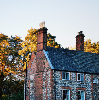 Brick houses and autumn leaves.
