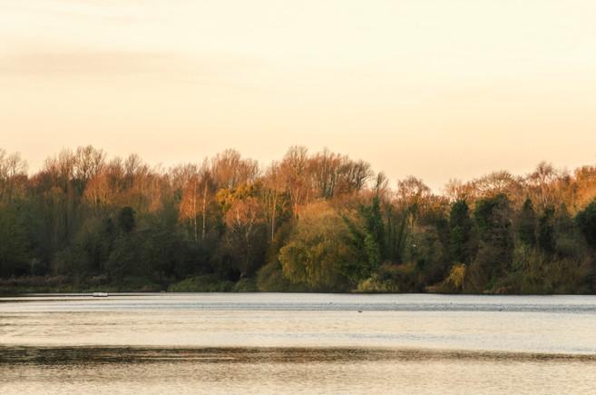 University of East Anglia lake, Norwich