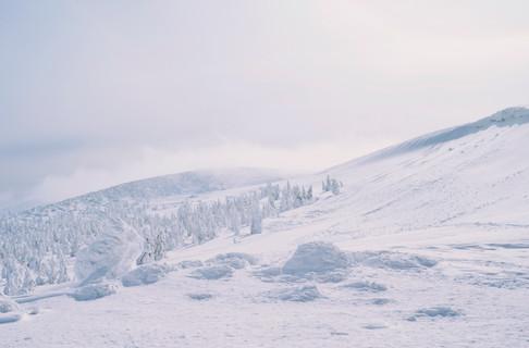 Snow Monsters in Zao Onsen Ski Resort, Yamagata Prefecture