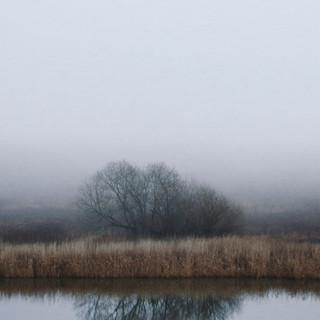 Fog in Guryevsk.
