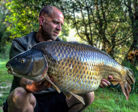 42lb Common carp - Les Gravelles exclusive carp lake with house and pool in France