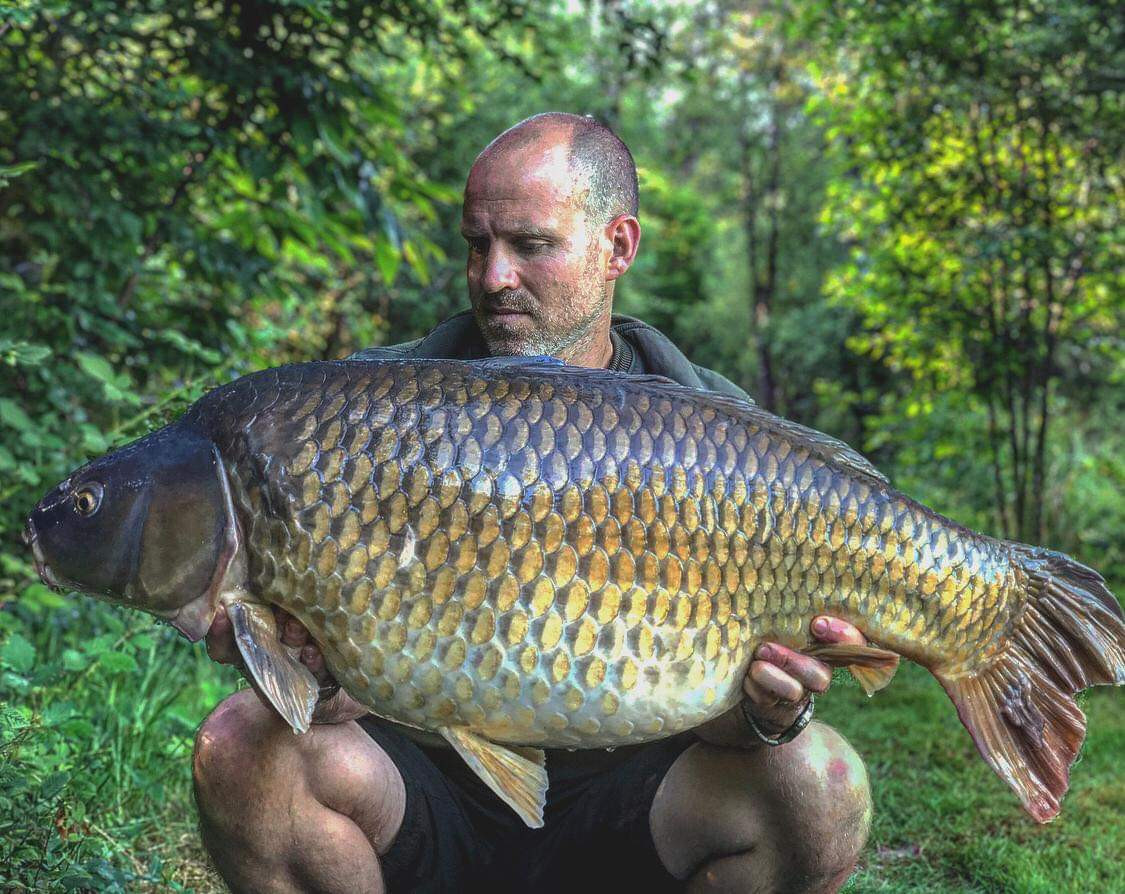 42lb Common Carp - Les Gravelles carp fishing in France with accommodation and pool