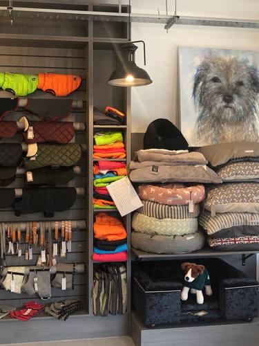 Dog Coats and Dog Beds
