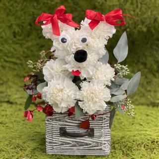 2021_valentines_day_puppy_flower_arrangement