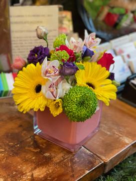 colourful_gerbera_flower_vase