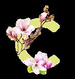 Chantel-C-Logo.png