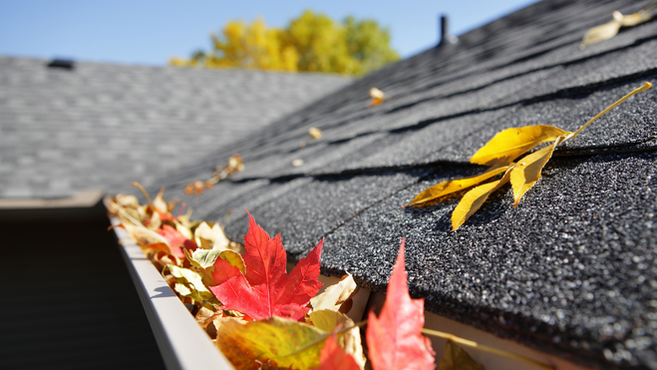 Gutter Cleaning – A Pesky Necessity