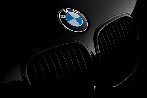 BMW Kidney 2.jpg