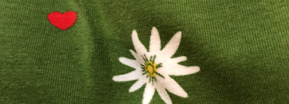 Edelweiss jersey Grün, Ökotex