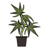 130682658-stock-vector-cannabis-martihua