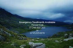 Emergency Dentist Bangor Bethesda