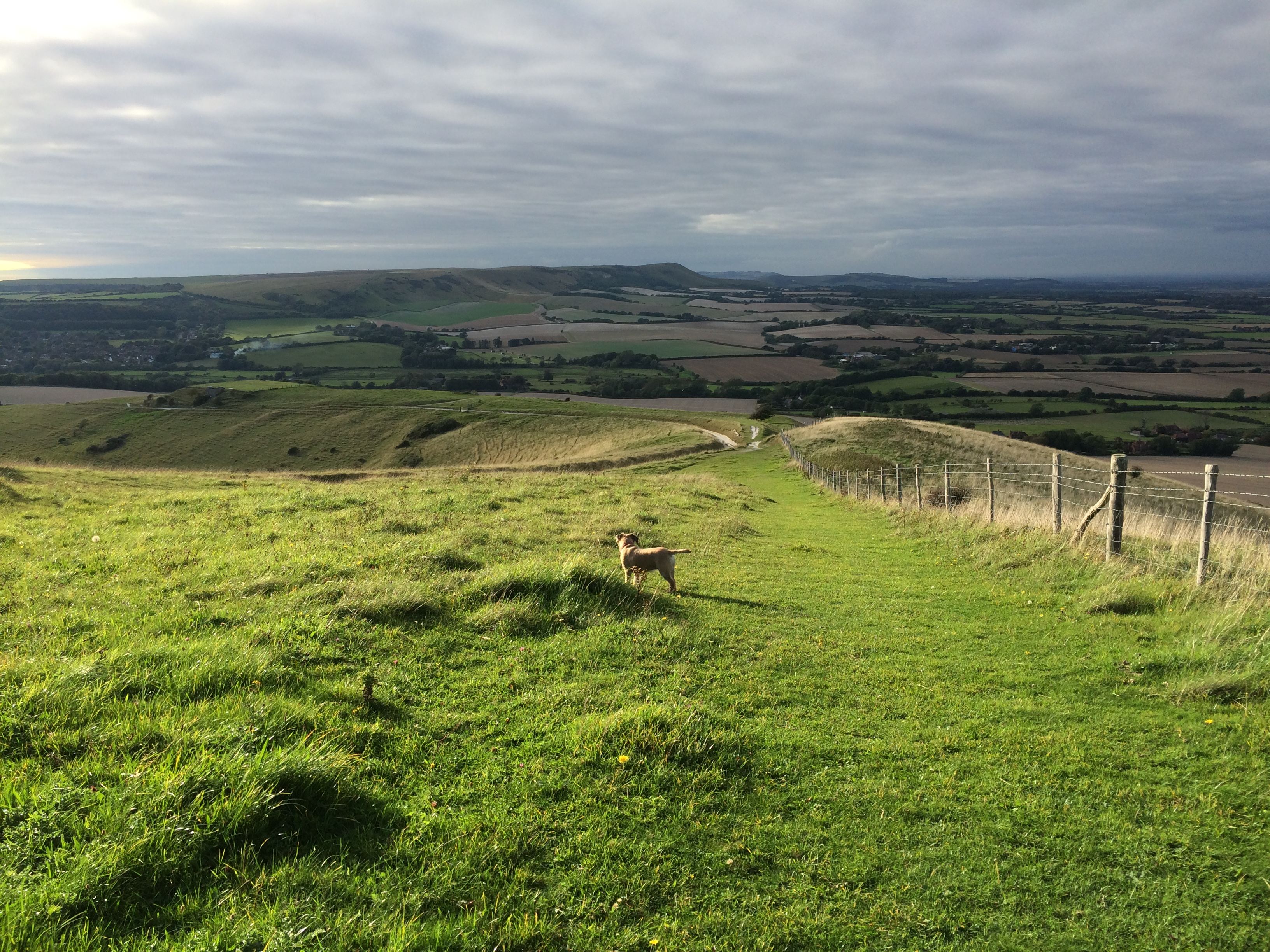 South Downs Way, towards Alfriston