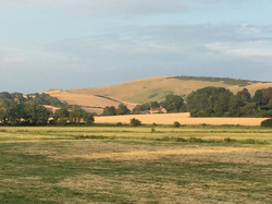 The South Downs.