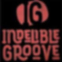 Indelible Groove Duo