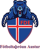 FDE Logo (Clear) (PNG).png