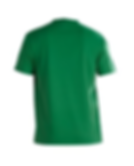 Shirt Green.png