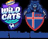 FDE Weetabix Wildcats Centres