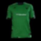 Maritime FC Home Shirt.png