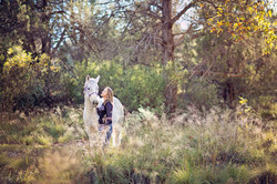 Equine Meadow