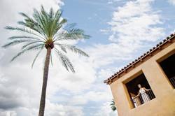 Gorgeous Bride - Royal Palms