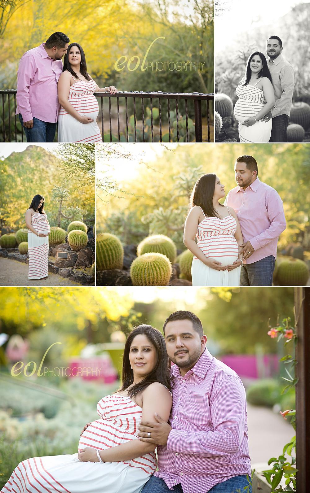 Maternity photos - yellow desert - cactus
