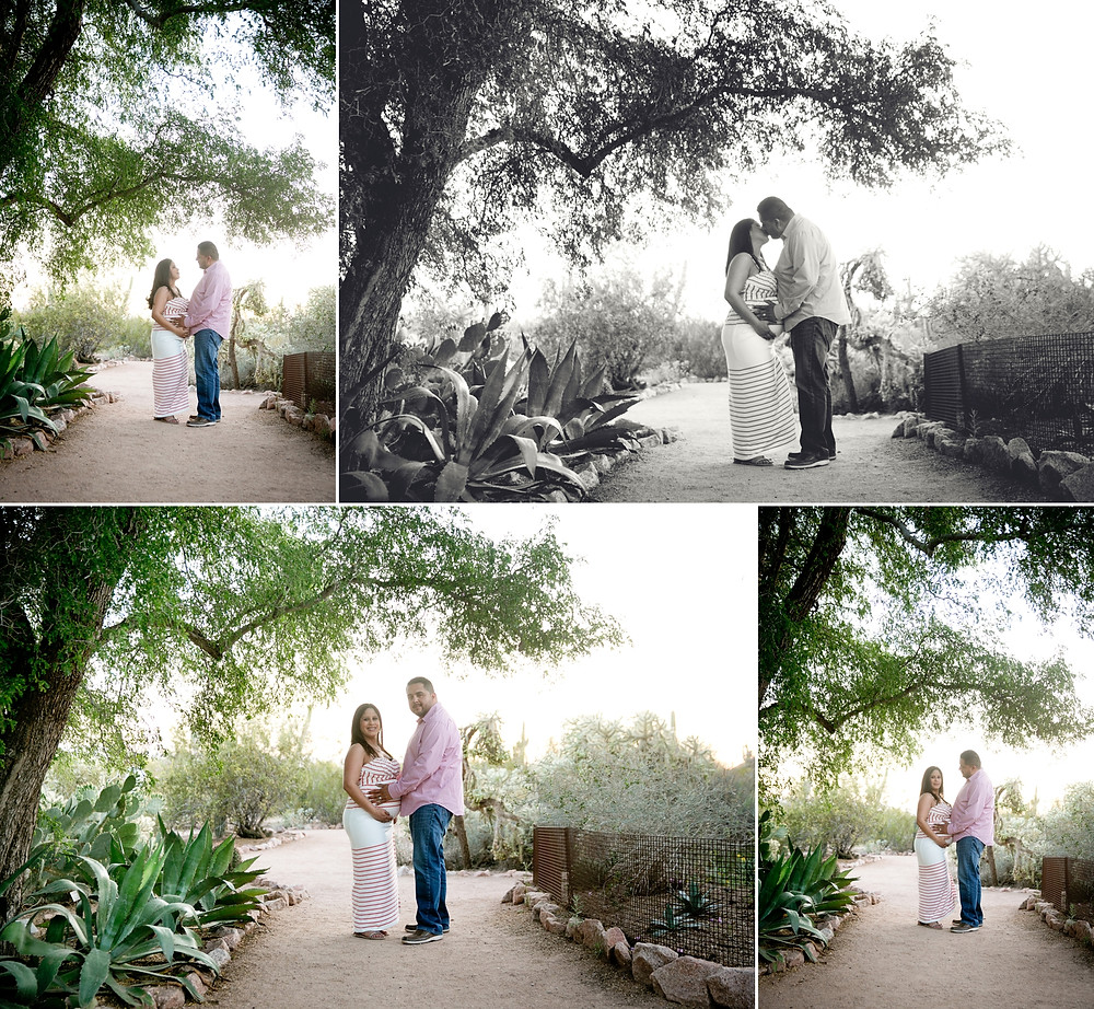 Desert Botanical Gardens is a romantic location
