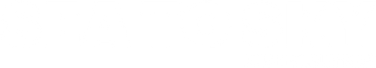 S2SDist Logo - WHITE.png
