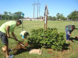 Jardinería CMT 2