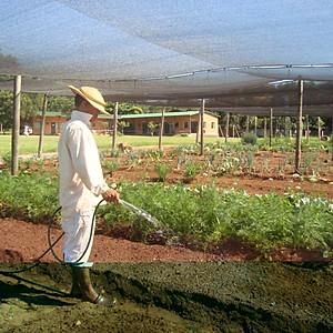 Oficios - Horticultura