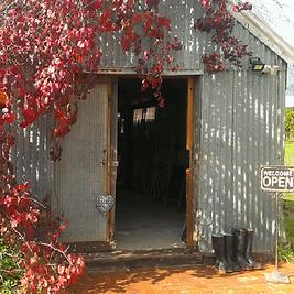10119_shed-square_EFUL_WEB.png