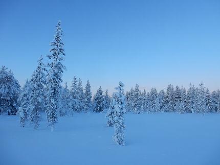 09-finlande-laponie-2020.JPG