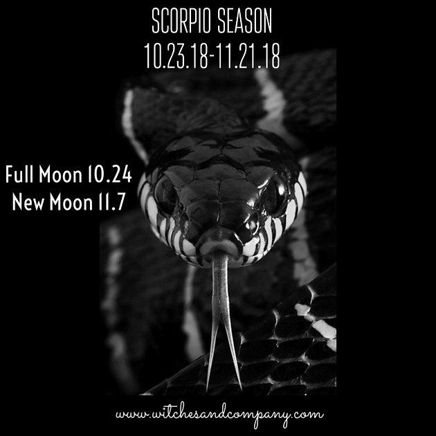 Scorpio Season #AstroWitch