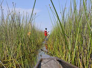 Okavango Delta (3).JPG