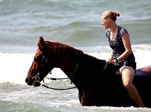 Lake Malawi horse ride.JPG