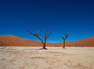 Sunway Namibia Sossusvlei Bruce Taylor-4