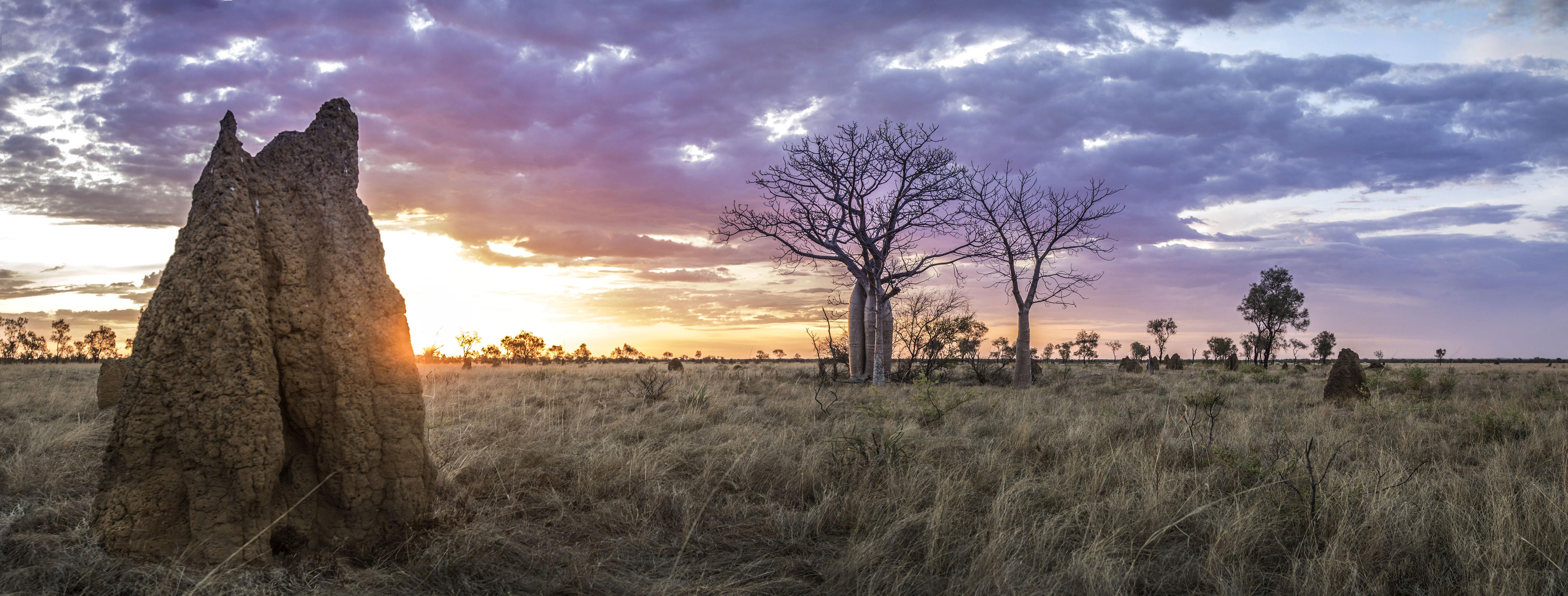 Kimberley Sunset