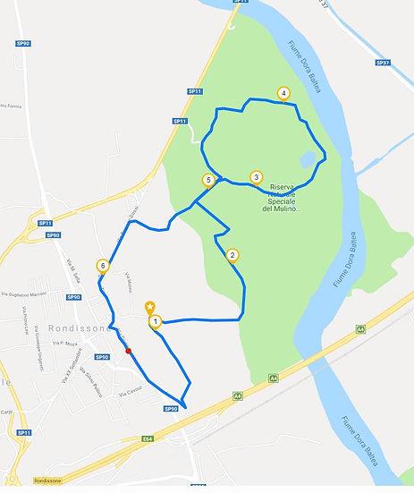 New Nordic Walking Rondissonissima 6.57