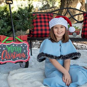 Isabella's Christmas Minis