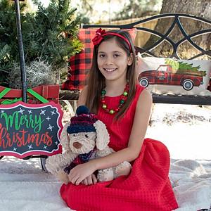 Katelyn's Christmas Minis