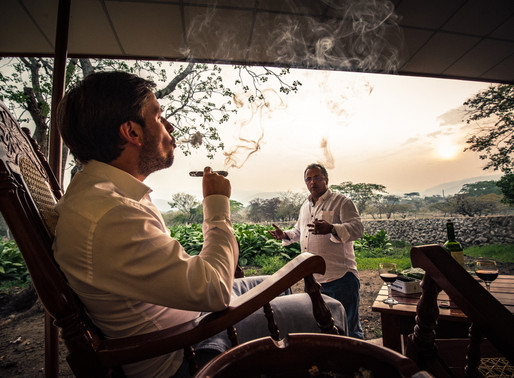 Is craft tobacco the future?