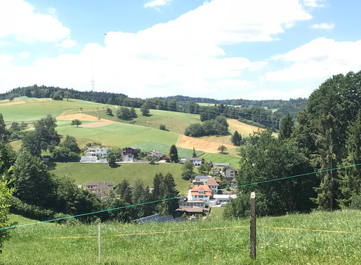 Up in the Swiss hills