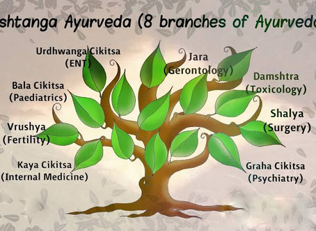 8 Components of Ayurveda Must Read